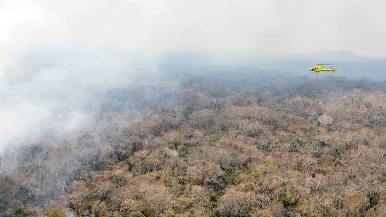 Un incendie près de San Ignacio de Velasco en Bolivie, le 19 septembre 2019 (photo d'illustration). (MINISTÈRE FRANÇAIS DE L'EUROPE ET DES AFFAIRES ÉTRANGÈRES / AFP)