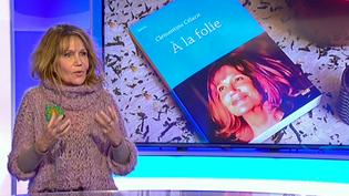 """Clémentine Célarié sur le plateau de France 3 Paris Ile de France pour présenter son roman """"A la Folie""""  (France 3 / Culturebox )"""