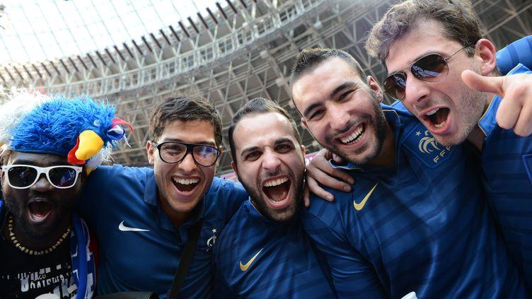Des supporters français à l'Euro 2012 lors du match France- Angleterre le 11 juin 2012 à la Donbass Arena de Donetsk. (FRANCK FIFE / AFP)