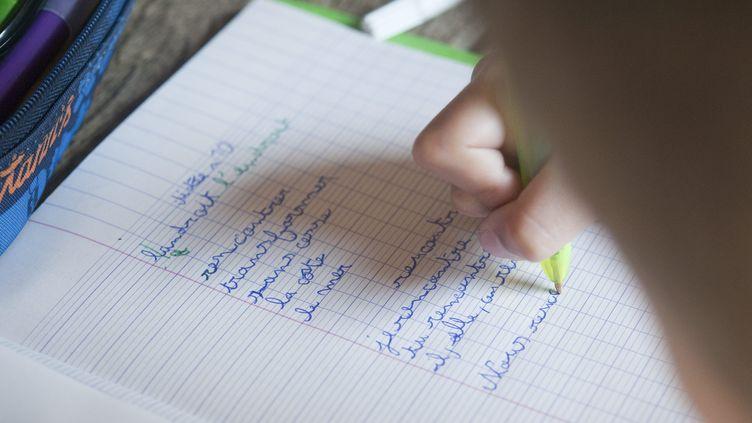 Les devoirs d'orthographe à l'école, le 28 mai 2017 (illustration). (MAXPPP)