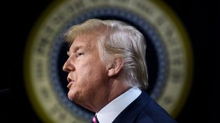 Donald Trump s'exprimer depuis Washington (Etats-Unis), le 19 décembre 2019. (BRENDAN SMIALOWSKI / AFP)