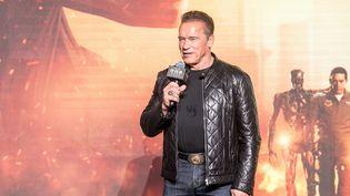 Arnold Schwarzenegger lors d'une conférence à Pékin, en Chine, le 23 octobre 2019. (IMAGINECHINA / AFP)