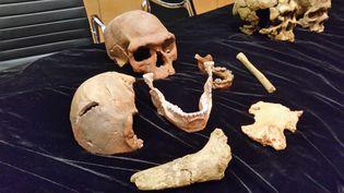 Les différents fossiles retrouvés par les anthropologues entre 2004 et 2016, àJebel Irhoud, au Maroc. (BRUNO ROUGIER / RADIO FRANCE)