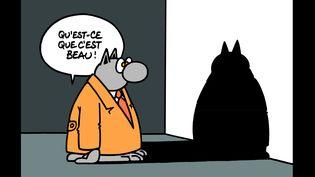 """Affiche de l'exposition """"Le Chat visite le Musée Soulages"""", à Rodez. (PHILIPPE GELUCK)"""