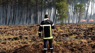 Un pompier mobilisé à Pessac (Gironde), le 26 juillet 2015. (MEHDI FEDOUACH / AFP)