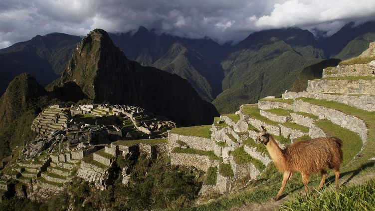 Le Machu Picchu au Pérou, le 2 décembre 2014. (ENRIQUE CASTRO-MENDIVIL / REUTERS)