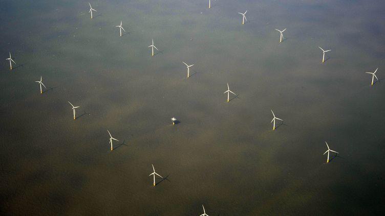 Un champ d'éoliennes en mer, ici au large de l'Angleterre, est en projet dans le nord-ouest de l'Europe, à l'inititaive de deux entreprises danoise et hollandaise. (MAXPPP)