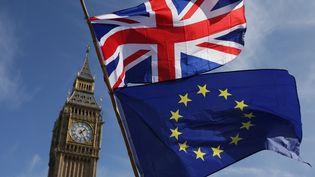 Une manifestation anti-Brexit devant le Parlement britannique, à Londres, le 27 janvier 2019. (DANIEL LEAL-OLIVAS / AFP)