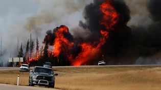 Des incendies ravagent les environs de Fort McMurray, dans la province d'Alberta (Canada), le 7 mai 2016. (MARK BLINCH / REUTERS)