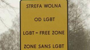 Pologne : un activiste LGBT affiche l'homophobie des communes sur des pancartes (FRANCEINFO)