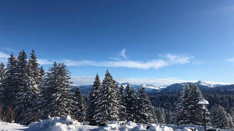 Paysage de neige au Mont Revard, La Féclaz (Savoie). (VALENTINE LETESSE / FRANCEINFO)