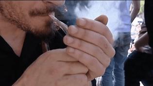 Cannabis : le point sur la légalisation (FRANCEINFO)