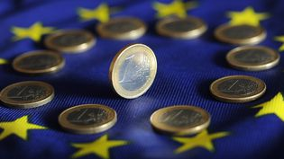"""Illustration """"Avenue de l'Europe"""" :La bataille pour le pouvoir d'achat (ULI DECK / DPA)"""
