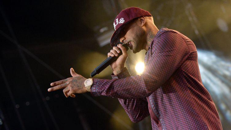 Le rappeur Booba, lors d'un concert au 27e Eurockéennes de Belfort, le 8 juillet 2017. (HUGO MARIE / EPA)