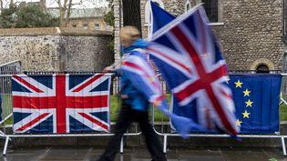 Un manifestant marche près de la Chambre du Parlement, à Londres (Royaume-Uni), le 18 mais 2019. (NIKLAS HALLE'N / AFP)