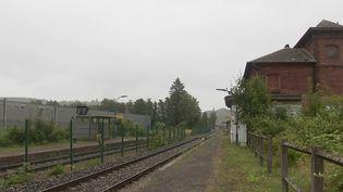 La gare de Heiligenberg-Mollkirch, dans le Bas-Rhin, a été totalement laissée à l'abandon. (CAPTURE ECRAN FRANCE 2)