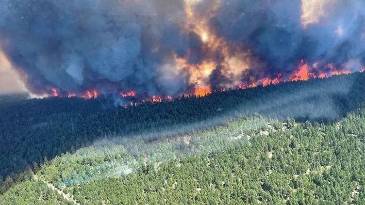 """Le feu de forêt """"Sparks Lake"""" (Canada), le 29 juin 2021. (BC WILDFIRE SERVICE / AFP)"""