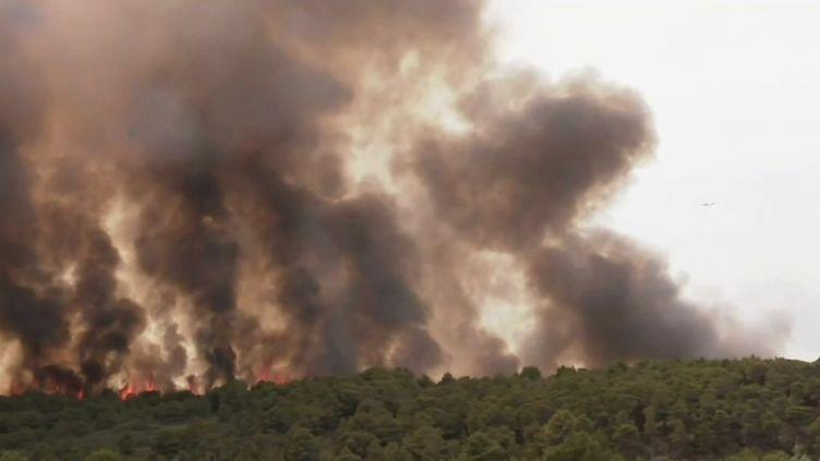 Aude : un incendie ravage 250 hectares de végétation. (FRANCEINFO)