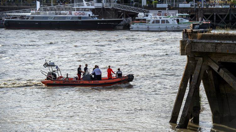Les secours sur les lieux de la découverte d'un corps, le 29 juillet, dans la Loire au pied de la grue jaune sur l'île de Nantes. (OLIVIER LANRIVAIN / MAXPPP)