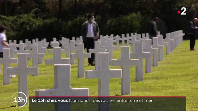 Normandie : entre histoire et terroir, à la découverte d'une région aux multiples facettes