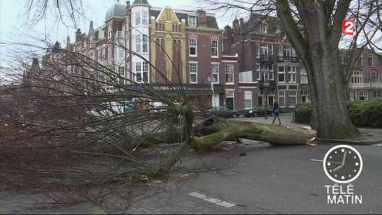 La tempête a causé des dégâts aux Pays-Bas. (FRANCE 2)