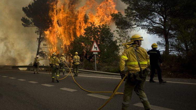 Les pompiers tentent de circonscrire l'incendie qui dévaste l'Andalousie, à Ojén, dans la province de Malaga (Espagne), le 31 août 2012. (JORGE GUERRERO / AFP)