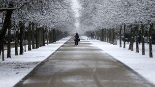 Des promeneurs dans le parc du Retiro, à Madrid, le 7 janvier 2021. (SENHAN BOLELLI / ANADOLU AGENCY / AFP)