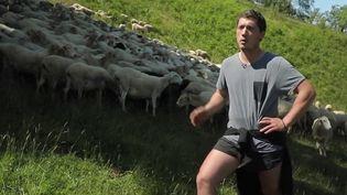 Nouvelle PAC : au Pays Basque, les agriculteurs bio craignent pour l'avenir de leur exploitation (France 3)