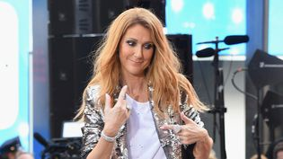 Céline Dion en concert à New York en juillet 2016.  (Michael loccisano / Getty Images / AFP)