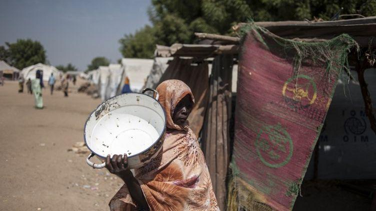 Une femme dans le camp de Bama (Nigeria), le 8 décembre 2016. (STEFAN HEUNIS / AFP)