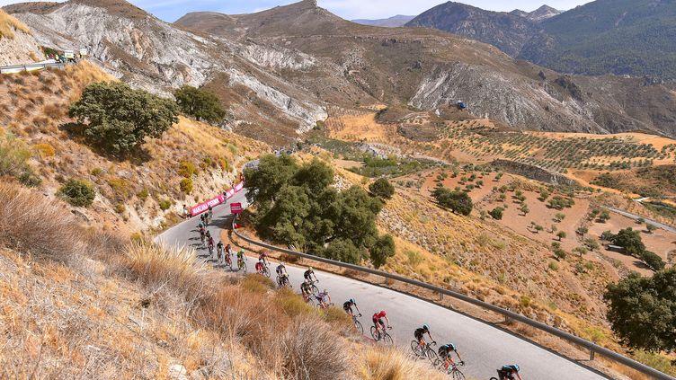 Le peloton de la Vuelta (DE WAELE TIM / TDWSPORT SARL)