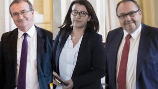 Les députés Hervé Mariton (LR), Cécile Duflot (EELVE) et Patrick Mennucci (PS), à l'Assemblée nationale. (MAXPPP)