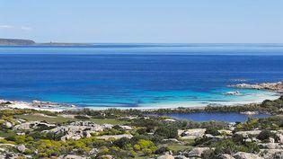 Le Parc naturel de l'Asinara, en Sardaigne, en avril 2021. (BRUCE DE GALZAIN / RADIO FRANCE)