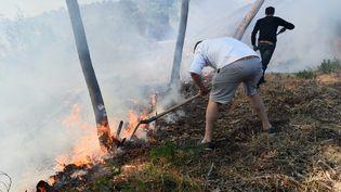 Deux hommes tentent de contenir l'avancée du feu à Bormes-les-Mimosas (Var), le 26 juillet 2017. (ANNE-CHRISTINE POUJOULAT / AFP)
