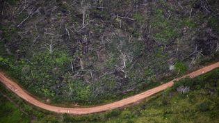 Une parcelle de forêt abattue, le 3 septembre 2020 à La Macarena (Colombie). Le pays est le plus dangereux pour les défenseurs de l'environnemment, avec 65 morts en 2020. (RAUL ARBOLEDA / AFP)