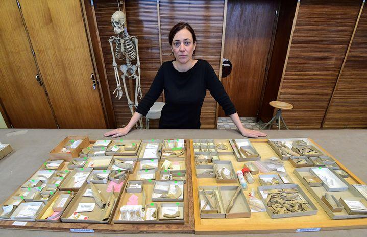 L'anthropologue française Hélène Rougier présente les ossements découverts à Goyet, à l'Institut royal belge des Sciences naturelles à Bruxelles, le 21 décembre 2016  (Emmanuel Dunand / AFP)