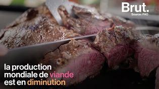 VIDEO. La production mondiale de viande est en diminution sur deux années consécutives (BRUT)