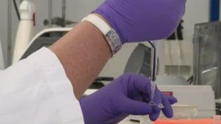 Les piqûres du vaccin contre leCovid-19vont bientôt être concurrencées.Des chercheurs de l'Université de Tours(Indre-et-Loire)font le pari d'administrer le vaccin par spray nasal.Les premiers résultats sont encourageants. (FRANCE 2)