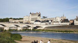 Les bords de la Loire à Amboise(Indre-et-Loire), le 13 août 2012. (EURASIA PRESS / PHOTONONSTOP / AFP)