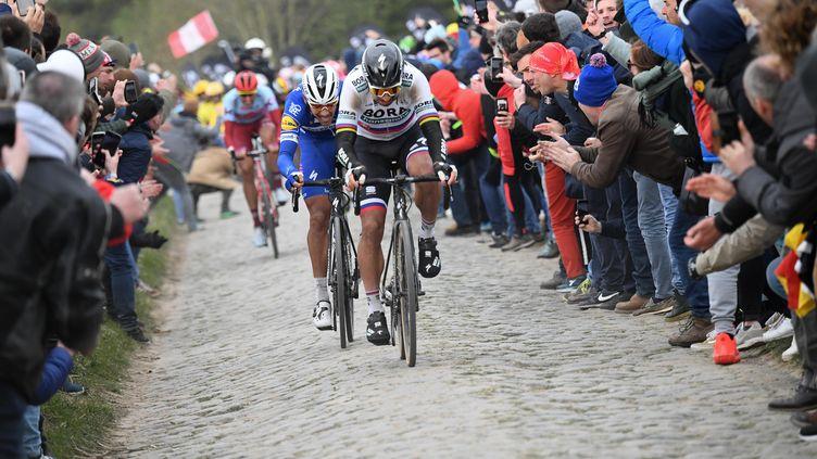 Paris-Roubaix en avril 2019 (STEPHANE MANTEY / POOL)