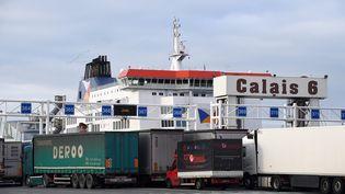 Des camionsattendent d'embarquerdans le port de Calais (Pas-de-Calais), le 14janvier 2019. (MAXPPP)