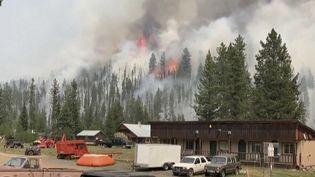 Incendies : l'Amérique du Nord sous les flammes. (FRANCE 2)