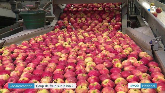Agriculture : les ventes de produits bio subissent-elles un coup de frein ?