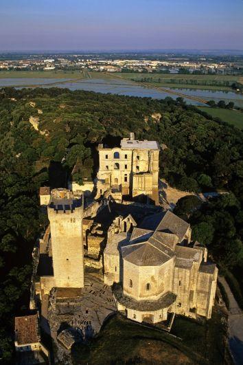 L'abbaye de Montmajour domine tout le pays d'Arles  (DAN SHANNON / AFP)