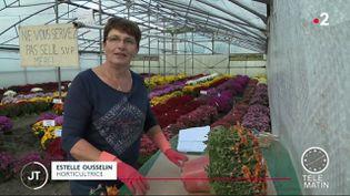 Estelle Ousseli, horticultrice, vend des chrysanthèmes.  (France 2)