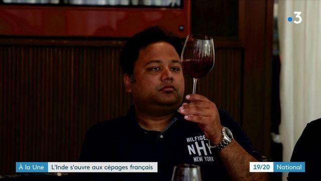Inde : le nouveau pays du vin ?
