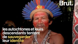 Parmi les 6700 langues parlées dans le monde, 4000 sont des langues autochtones. (BRUT)