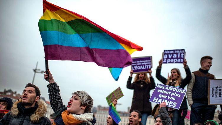 Des manifestants sont rassemblés à Lyon(Rhône) pour soutenir l'ouverture du mariage aux couples homosexuels, le 26 janvier 2013. (AFP PHOTO / JEFF PACHOUD)