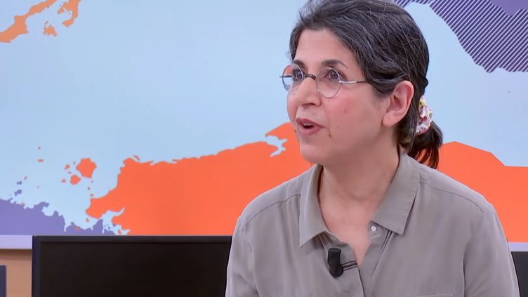 """L'anthropologue Fariba Adelkhah sur le plateau de franceinfo et France 24 dans l'émission """"Le Monde dans tous ses états"""", en février 2019. (FRANCEINFO / FRANCE 24)"""