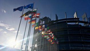 Le parlement européen, à Strasbourg. (NOÉMIE BONNIN / RADIO FRANCE)